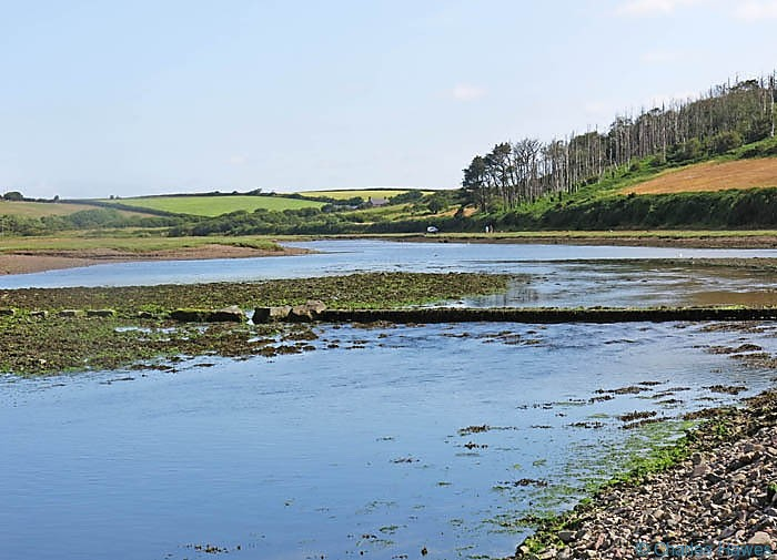 Stepping Stones at The Gann, Musslewick photographed from The Wales Coast Path by Charles Hawes