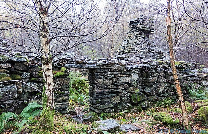 Ruined cottage near Beddgelert, Sowdonia, photographed by Charles Hawes