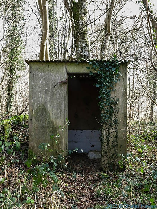 Concrete shelter near Grovely Lodge, Wiltshire, photographed by Charles Hawes