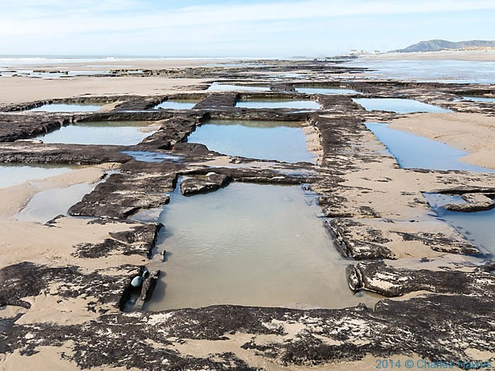 Peat beds exposed on beach near Tywyn, wales, photographed from The Wales Coast path by Charles Hawes