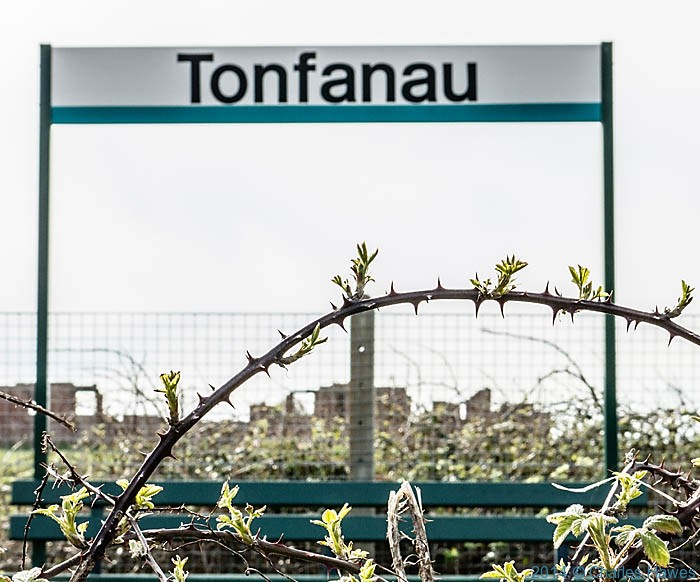 Tonfanau train station, photographed from The Wales Coast Path by Charles Hawes