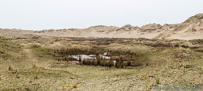 San dunes  near Llanenddwyn, Gwynedd photographed by Charles Hawes