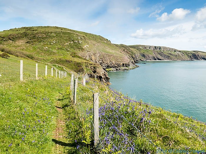The Wales Coast Path near Trwyn Llech-y-doll, photographed by Charles Hawes