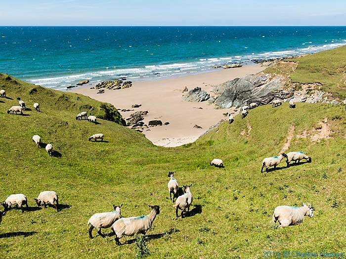 Beach at Towyn, Lleyn peninsula, photographed from The wales Coast Path by Charles Hawes