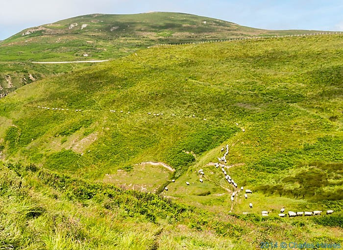 View to Mynydd Anelog from near Mynydd Mawr, photographed from The Wales Coast Path by Charles Hawes