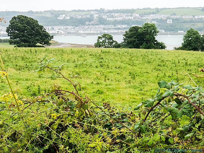 View to Y Felinheli across the Menai Strait, photographed from The wales Coast Path by Charles Hawes