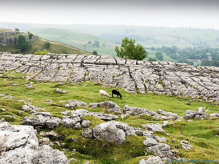 Limestone pavement at the top of Malham Cove, photographed by Charles Hawes