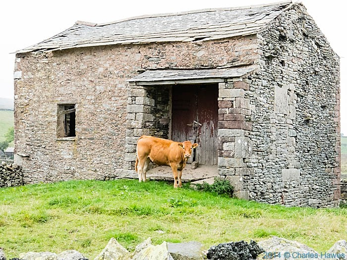 Barn near Ravenstonedale, Cumbria, photographed by Charles Hawes
