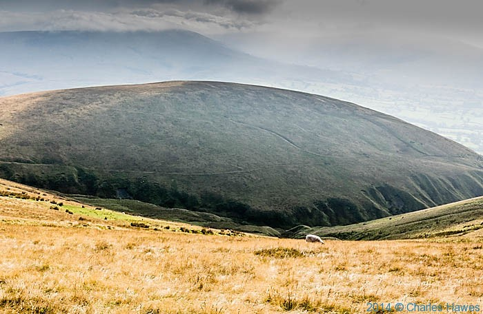 Middle Tongue, Howgill Fells, photographed by Charles Hawes