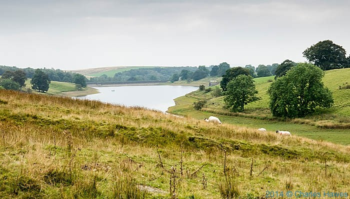 Winterburn reservoir, photographed from The Dales High Way by Charles Hawes