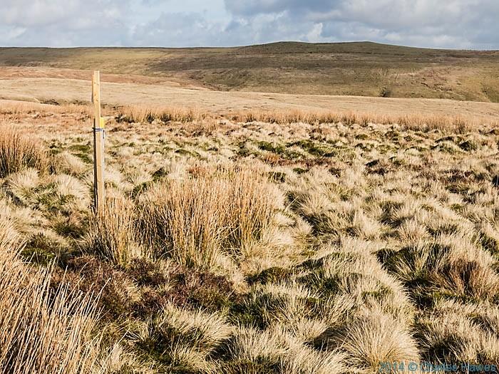 Glyndwr's Way near Dylife, Powys, photographed by Charles Hawes