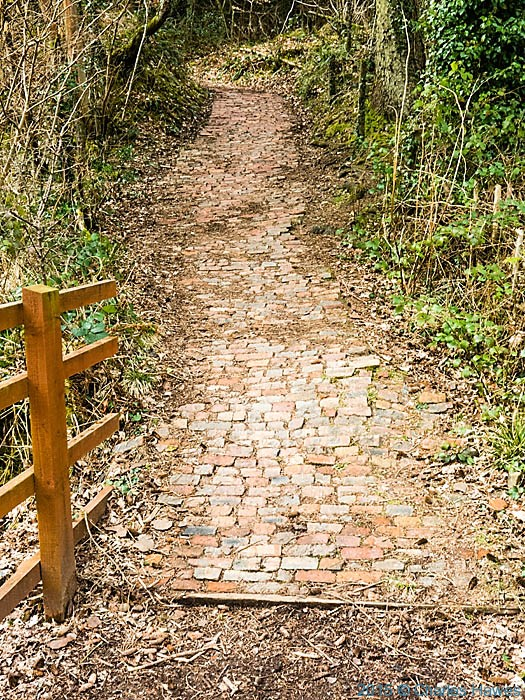 Brick Path in The Warren wood, Caerphilly, photographed by Charles Hawes