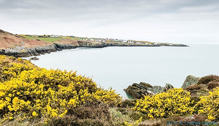 View to Bukll Bay photographed from the Wales Coast Path in Anglesey by Charles Hawes