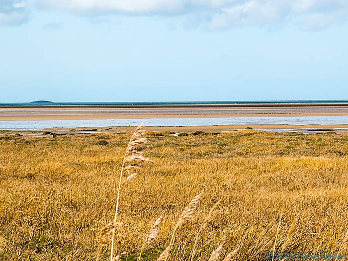 marshes at  Red Wharf Bay, Anglesey, photographed from The Wales Coast Path by Charles Hawes