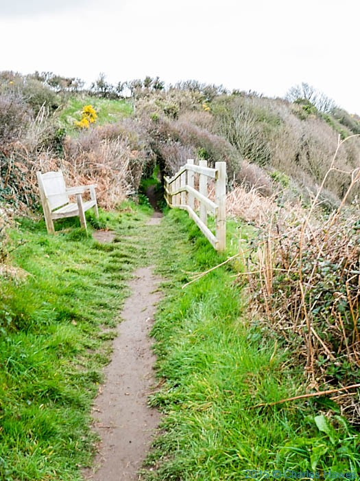 Bench on the Wales Coast Path in Anglesey, photographed by Charles Hawes