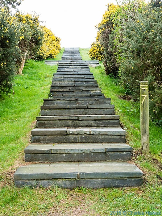 Steps leading to the Wylfa power station viewing point, photographed by Charles Hawes