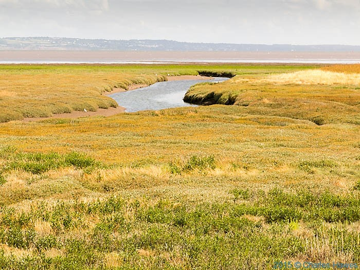 Point of Ayr Nature Reserve, photographed from The Wales Coast Path by Charles Hawes