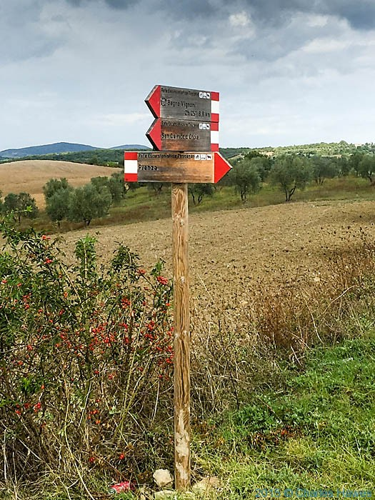 Right of Way signs near Pienza, photographed by Charles Hawes