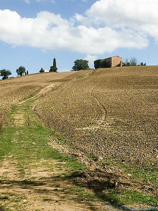 Podere San Tito, outside Pienza, Tuscany, photographed by Charles Hawes