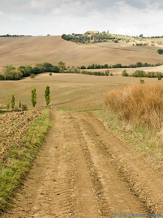Right of way in countryside near Pienza, Tuscany, photographed by Charles Hawes