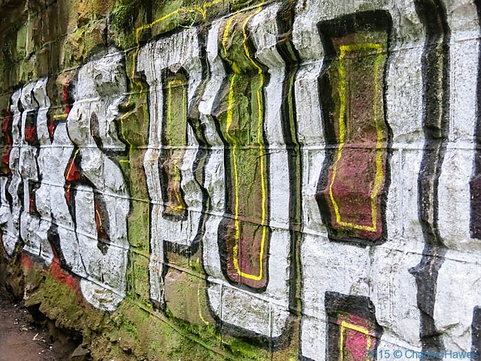 Graffiti near Hailey Park, Cardiff, photographed from the Cambrian Way by Charles Hawes