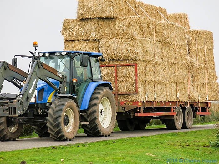 Tractor towing trailer with straw bales, near Llanddeusant, photographed from the Cambrian Way by Charles Hawes