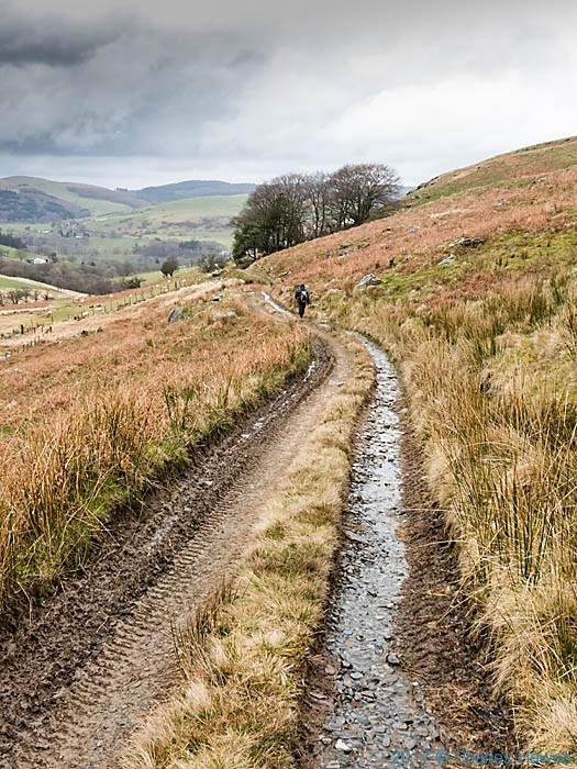 Track leading to Cwmystwyth, photographed from the Cambrian Way y Charles Hawes