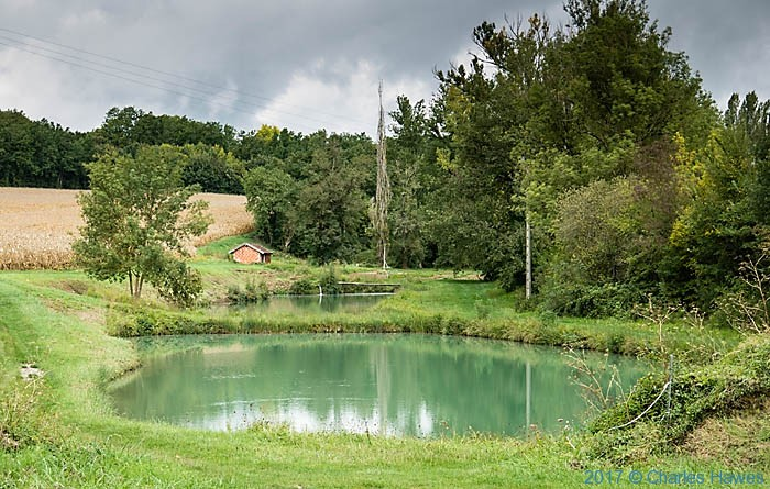 Fishing ponds near the GR46 at La boissiere, France, photographed by Charles Hawes