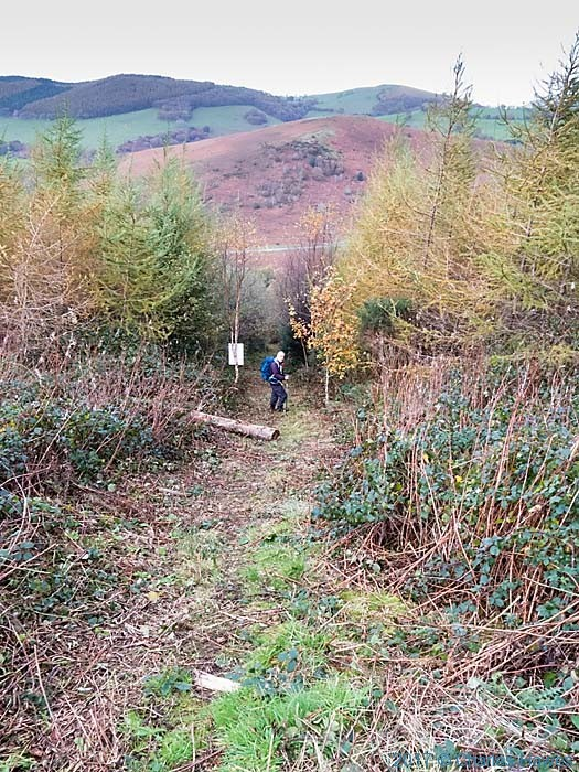Cambrian Way near Commins Coch, photographed by Charles Hawes