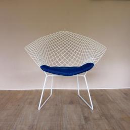 Charles Ray and Coco - blog deco - Bertoia