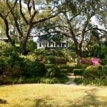 charleston-sc-garden