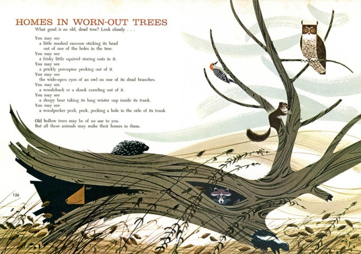 Owls & Tree | Charley Harper Prints | For Sale