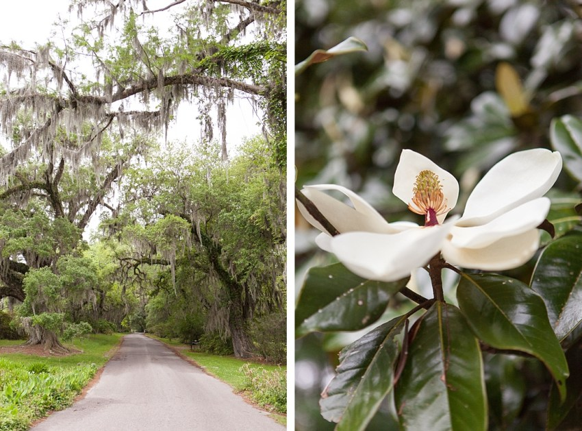 Charleston_SouthCarolina_012