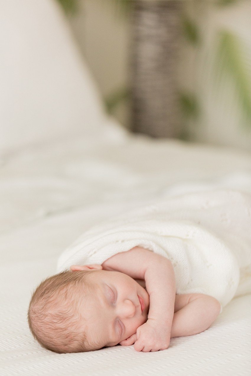 Dumbo Newborn Portraits, Charlie Juliet Photography