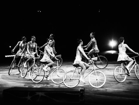 RB_Circus_2014_1 (1 of 1)