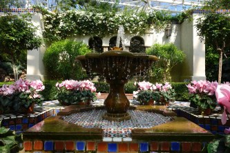 Fountain in the Temperate House