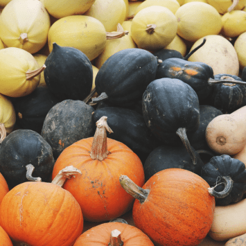 keto diet friendly pumpkins, acorn squash & spaghetti squash - all will last for a long time in a cool place.