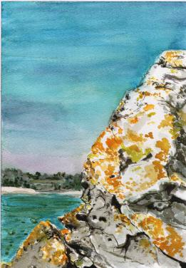 """Rock Lichen in Saint Cast"", watercolour on paper, 16x12"", Charlie Kirkham 2015."
