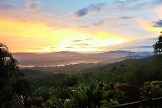 Morning view from house sit Costa Rica