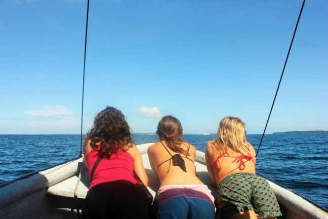 Bocas del Toro dolphin tour tourist demand - Charlie on Travel
