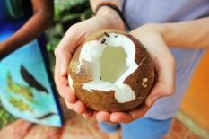 Luke holds cracked coconut - Charlie on Travel