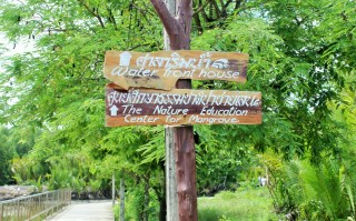 Ban Nam Chiao mangrove education sign - Charlie on Travel