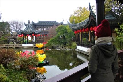 Portland City Guide - Lan Su Chinese Garden lotus pond
