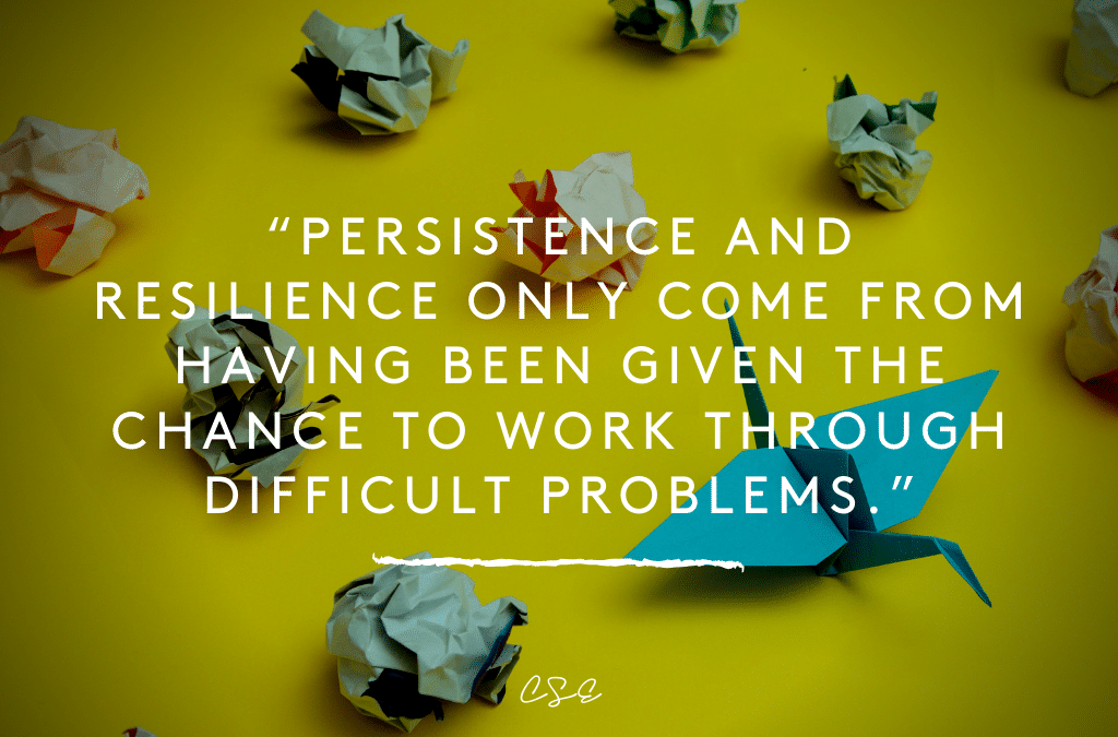 Persistence and resilience only come from having been given the chance to work through difficult problems.""