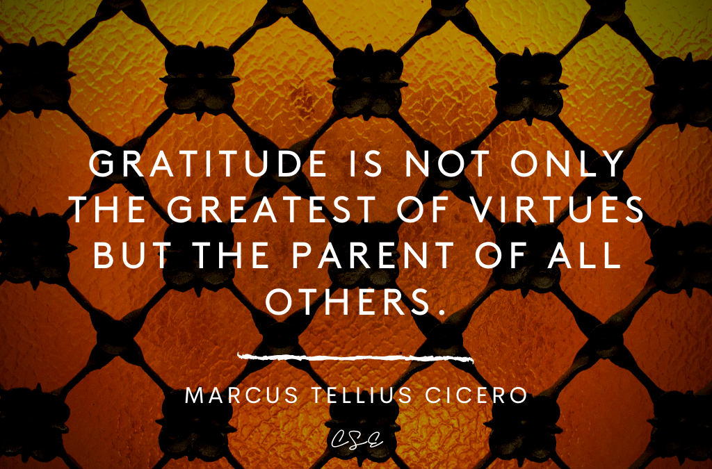 Gratitude is not only the greatest of virtues but the parent of all others. - MTC