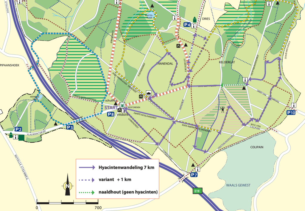 map of the best bluebell hike in Belgium
