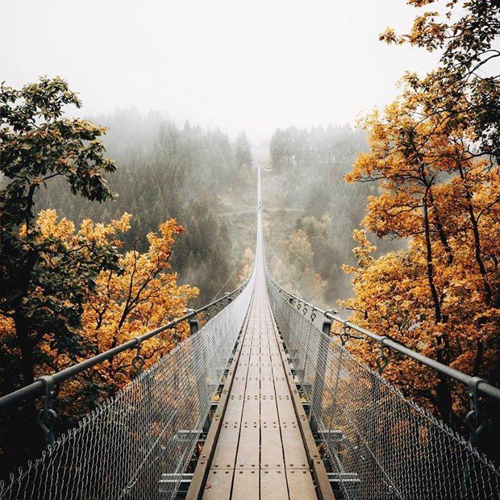 Geierlay Suspension Bridge in Mörsdorf, Germany - Travel Guide