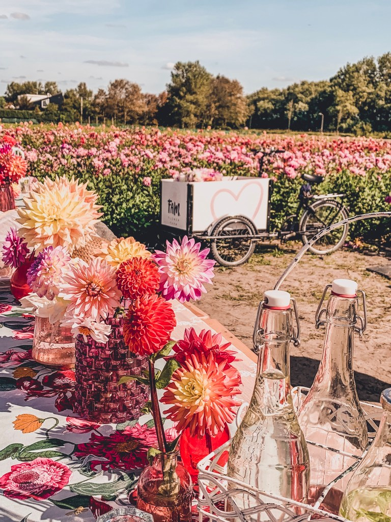Fam Flower Farm - A Day Trip To This Amazing Dahlia Farm in The Netherlands
