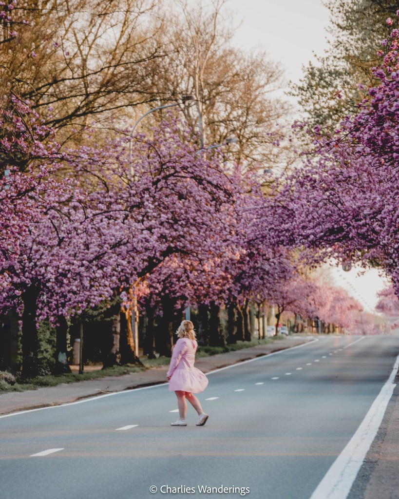 Spring In Belgium - 17 Beautiful Places You Have To See