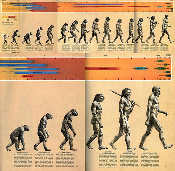 """Oryginalny skan jednej z najsłynniejszych ilustracji naukowych. Tak zwany """"Marsz rozwoju"""" to ikonograficzne przedstawienie rozwoju gatunku homo sapiens. Źródło: https://en.wikipedia.org/wiki/March_of_Progress"""
